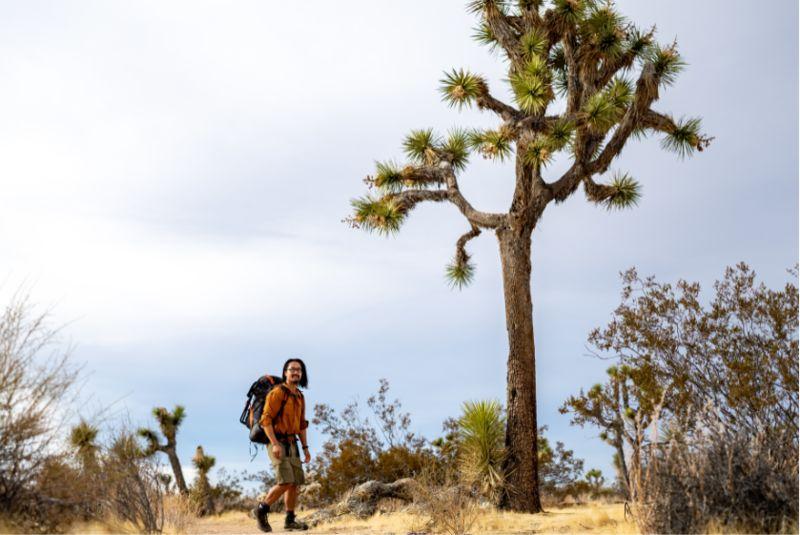 All-Terrain Hiking Boots