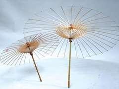 Biodegradable Umbrella