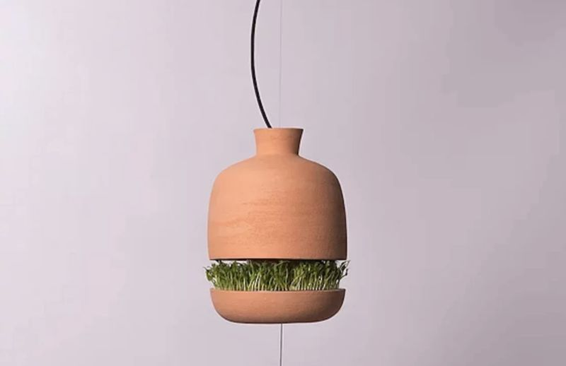 Floating Food-Growing Lamps