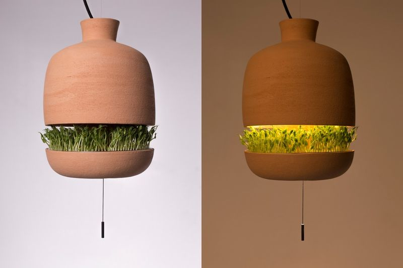 Greenery-Growing Hanging Lights
