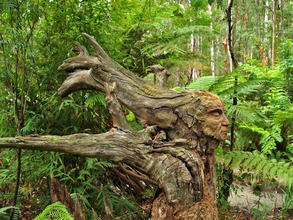 Fantastical Forest Figures