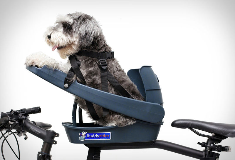 Pet-Friendly Bike Seats