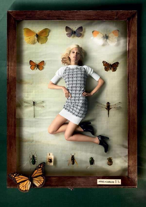 Butterfly-Ridden Ads