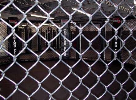 Cage-Fighting Children