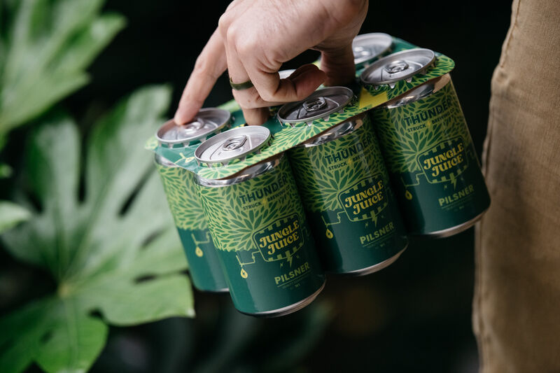 Paper-Based Can Carriers