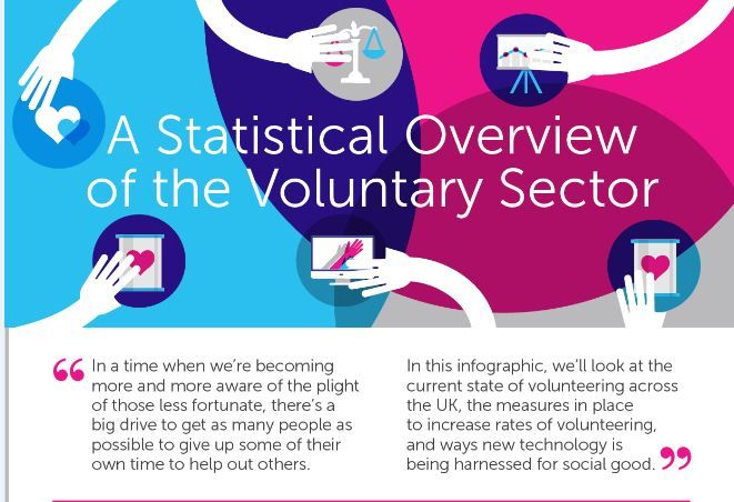 Volunteer Statistic Infographics