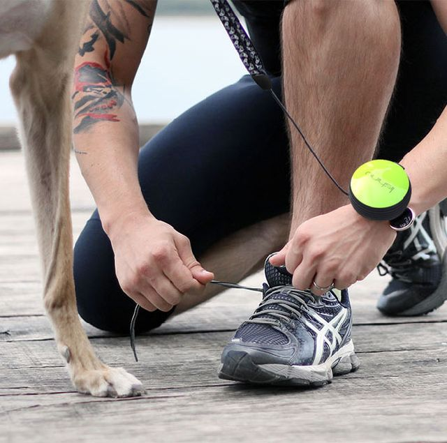 Hands-Free Canine Leashes