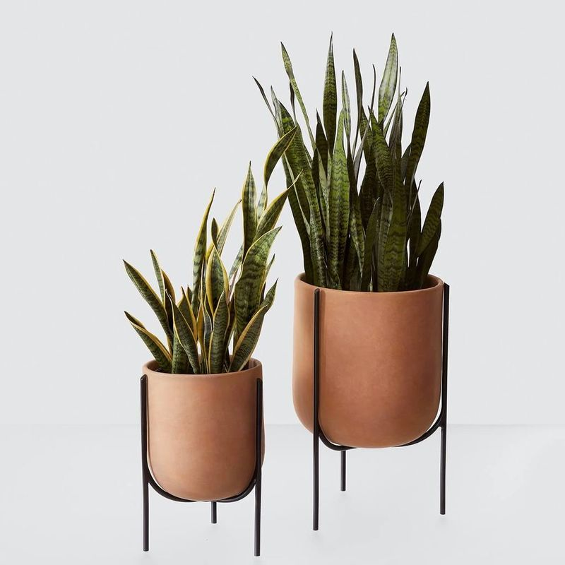 Smooth Burnished Clay Pots