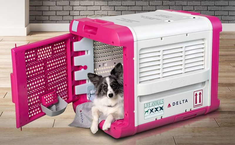 Comfort-Focused Airline Pet Carriers