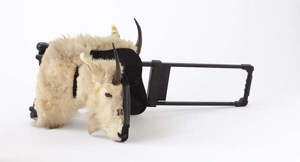 Wearable Taxidermy