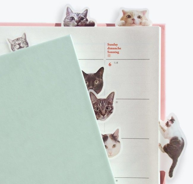 Feline-Themed Page Markers