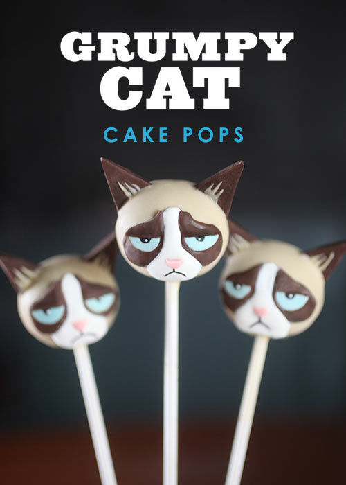 Cat Meme Cake Pops