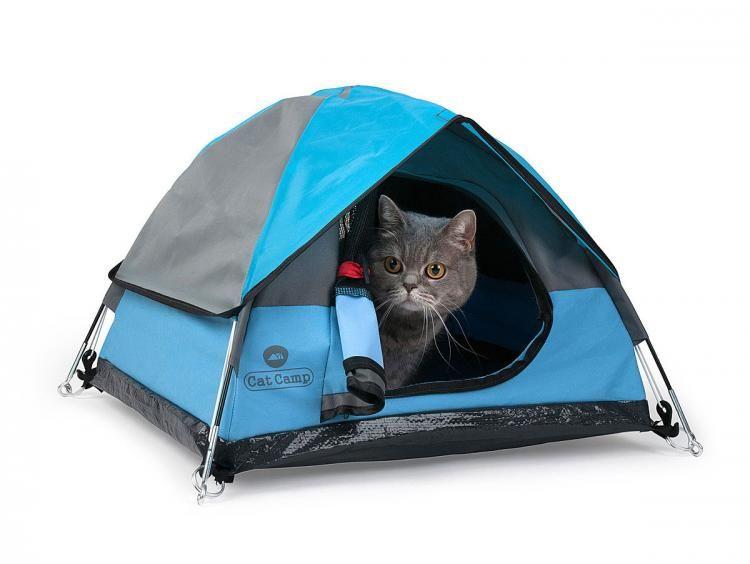 Kitty C&ing Equipment  sc 1 st  Trend Hunter & Kitty Camping Equipment : Cat Camp Feline Tent