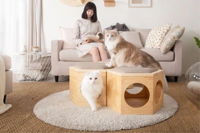 Design-Conscious Cat Stools
