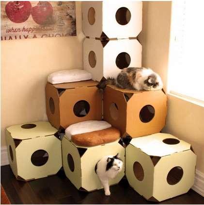 Eco-Friendly Feline Homes