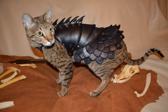 Armored Feline Costumes