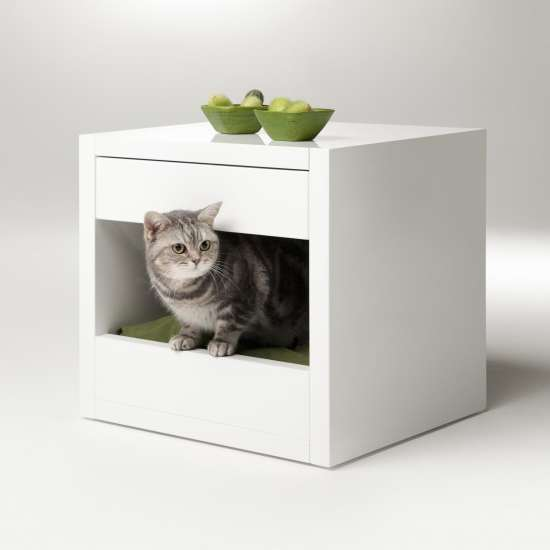 Cute Kitty Cubicles