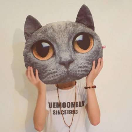 Cat Head Cushions