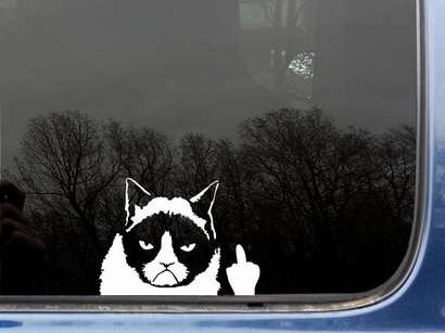 Offensive Cat Meme Decals