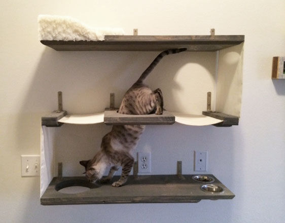 tri level cat shelves cat furniture design. Black Bedroom Furniture Sets. Home Design Ideas