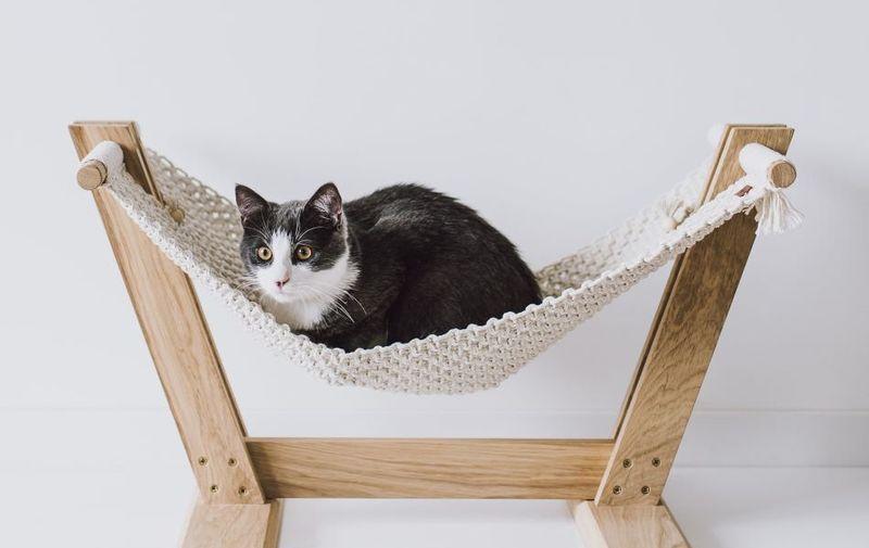 Hanging Macrame Cat Beds