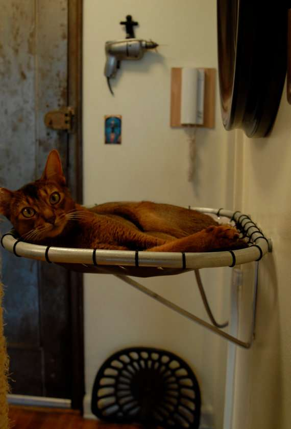 Levitating Pet Beds : Cat Hammock