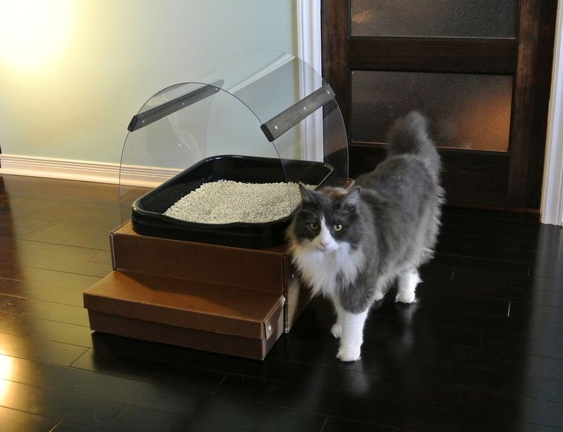 Eco-Friendly Litter Boxes