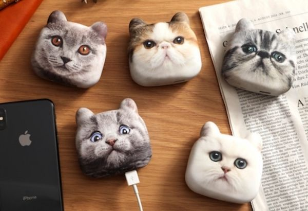 Feline-Themed Phone Chargers