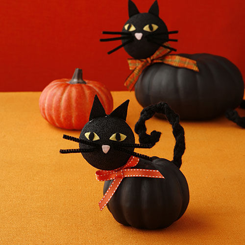 Adorable Kitty Pumpkins