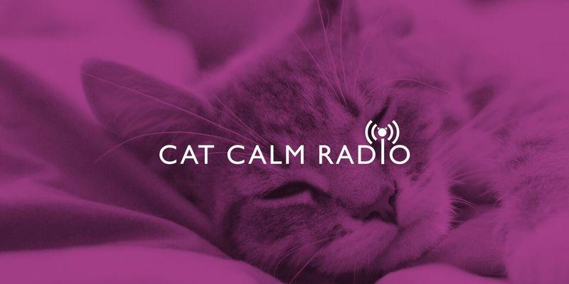 Calming Cat Radio Stations
