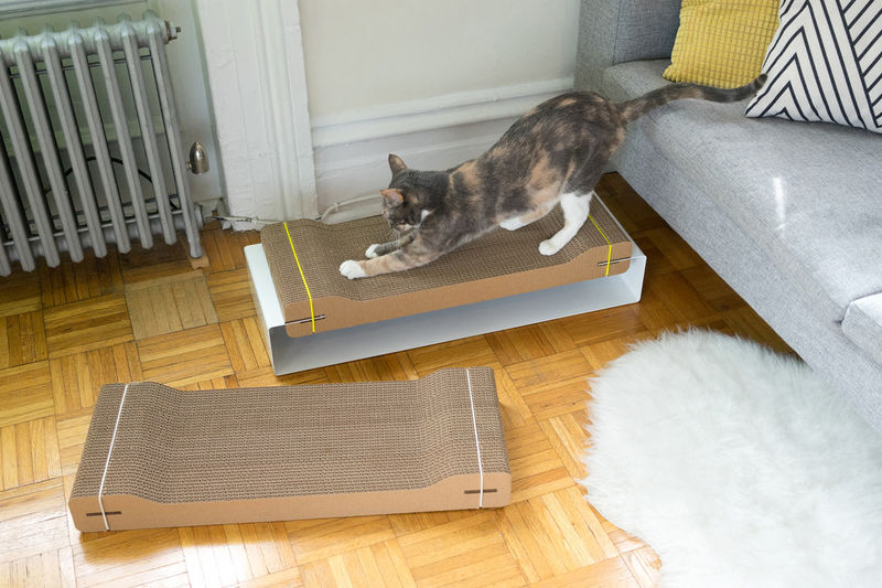 Design-Centric Cat Scratchers