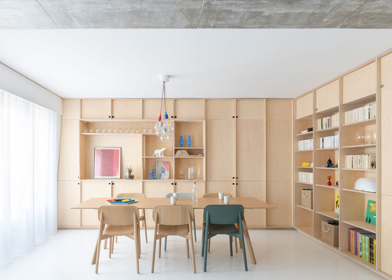 Contemporary Cat-Friendly Apartments