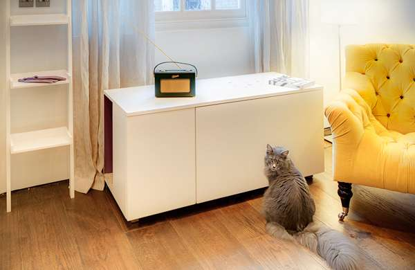 Hidden Cat Waste Furniture