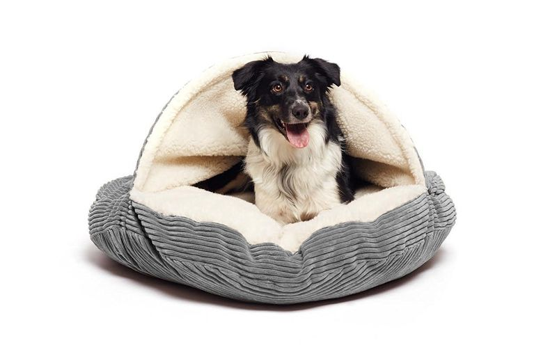 Cave-Inspired Dog Beds