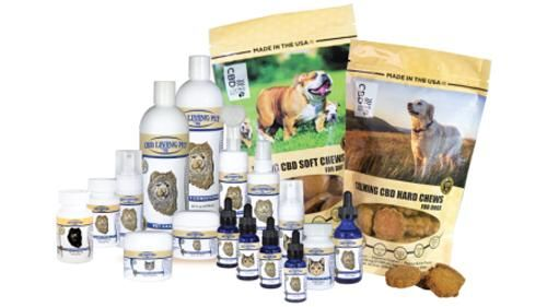 CBD-Powered Pet Products
