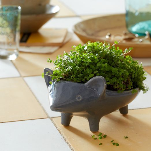 Hedgehog home garden accessories ceramic animal planter for Garden accessories online