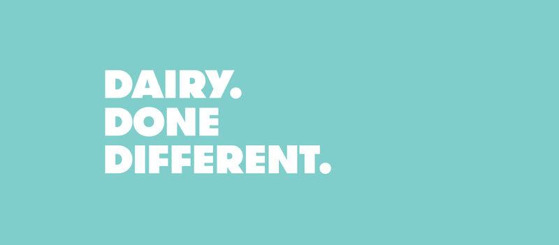 Bio-Engineered Animal-Free Dairy