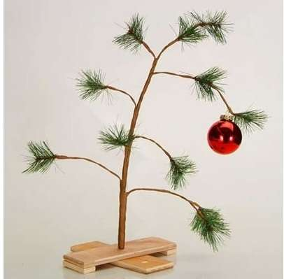 Sparse Christmas Tree Decorating.Sparse Holiday Firs Charlie Brown Christmas Tree