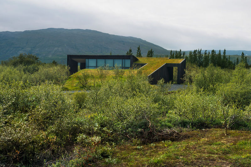 Charred Timber Homes