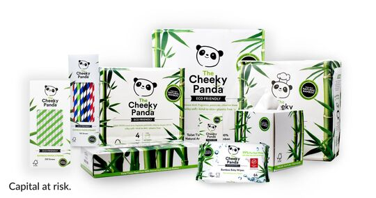 Bamboo-Based Paper Products