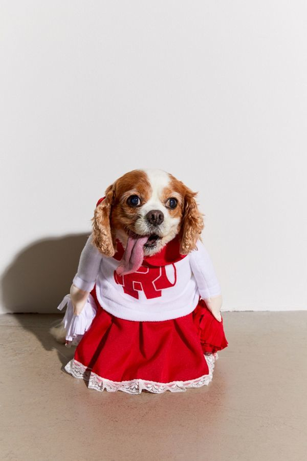Cheerleader Dog Halloween Costumes