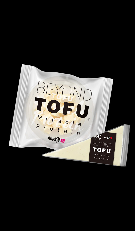 Fermented Cheese Alternatives