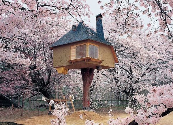 Fairy Tale Tree Houses