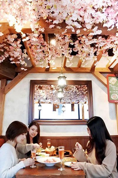 Springtime Sakura Parties