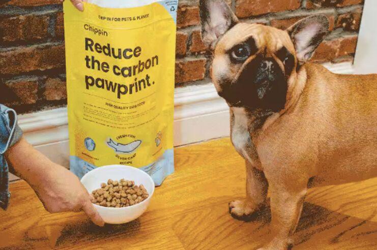 Invasive Carp-Based Dog Foods