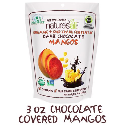 Chocolate-Covered Fruit Bites