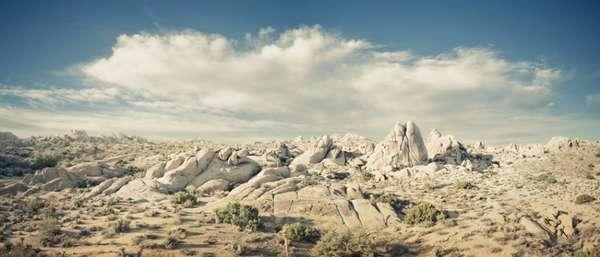 Dry Desert Captures