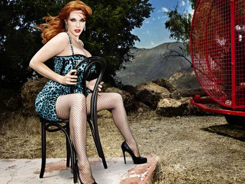Animalistic Pin-Ups