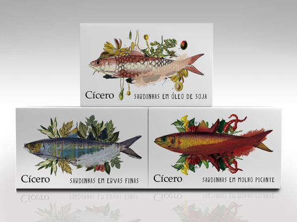 Vibrantly Flavorful Sardine Boxes