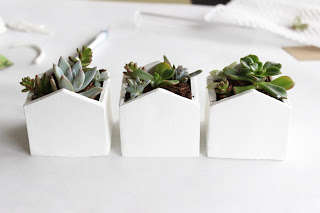 DIY Mini Clay Planters